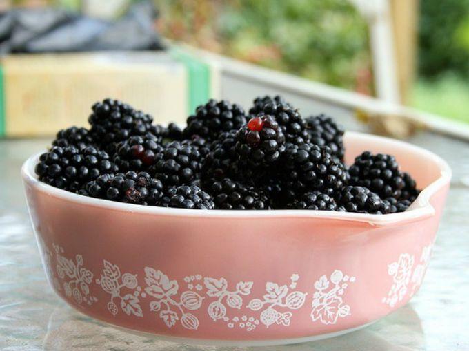 zarzamora es la fruta estrella para bajar de peso contienen slo caloras por