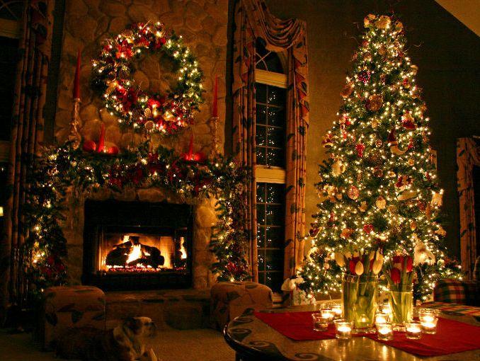 cuidado de un rbol de navidad