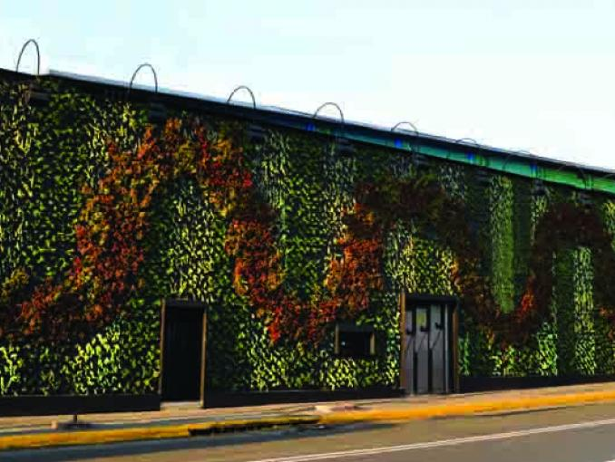Jardines verticales le dan vida a los edificios actitudfem for Para que sirven los jardines verticales