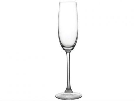 Una copa de champan para dunia montenegro - 4 1