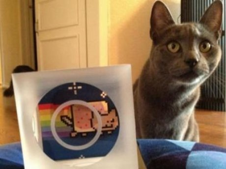 nyan_cat_torres_bits.jpg