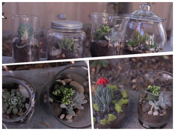 Como hacer un terrario decoraci n actitudfem for Decoracion para terrarios