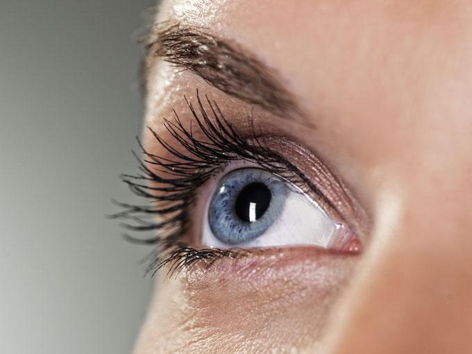 Remedios caseros para perrillas en el ojo