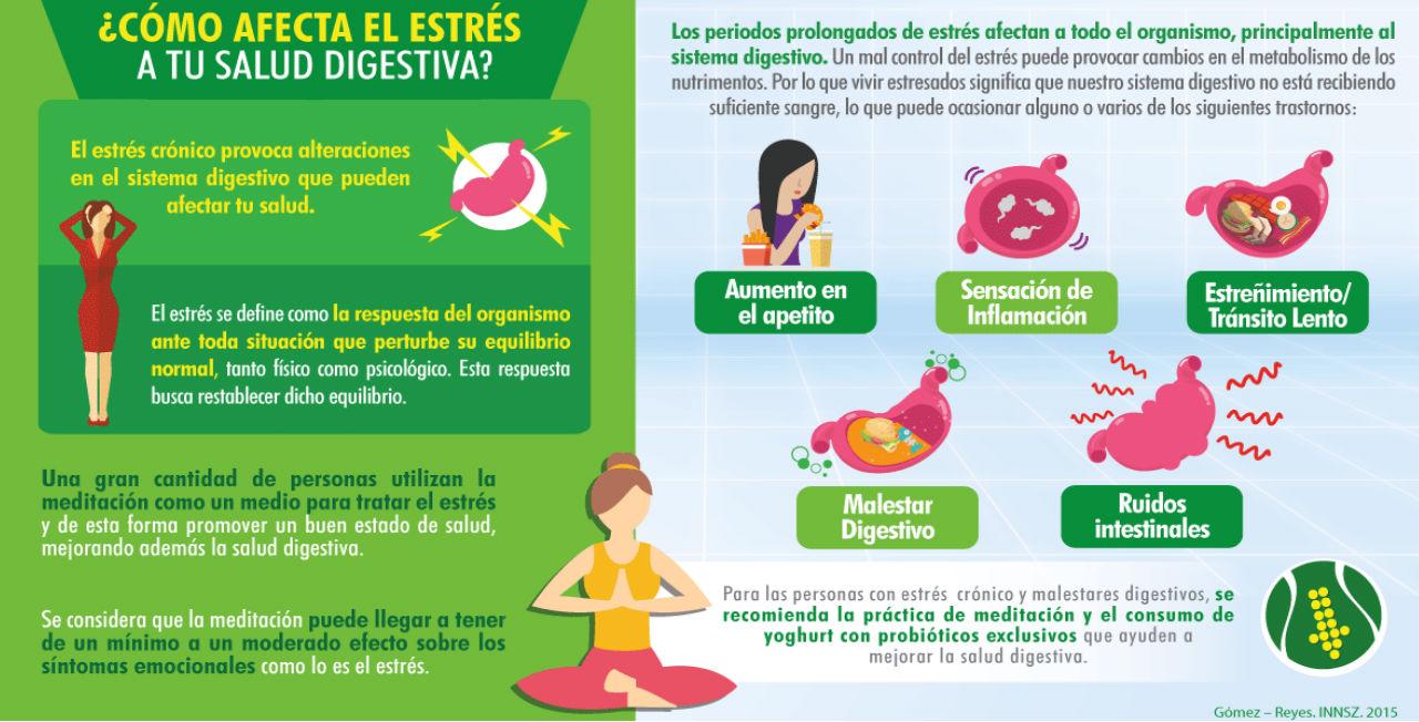 Así afecta el estrés a tu salud digestiva | ActitudFem