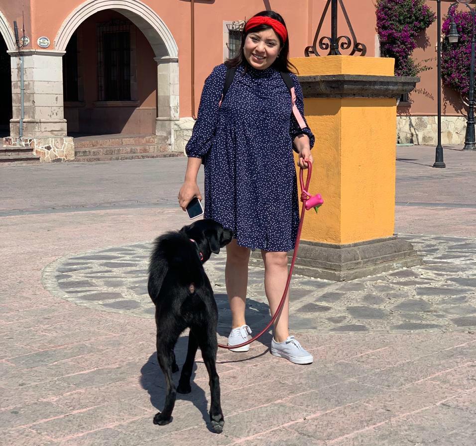 colageno-hidrolizado-para-perros