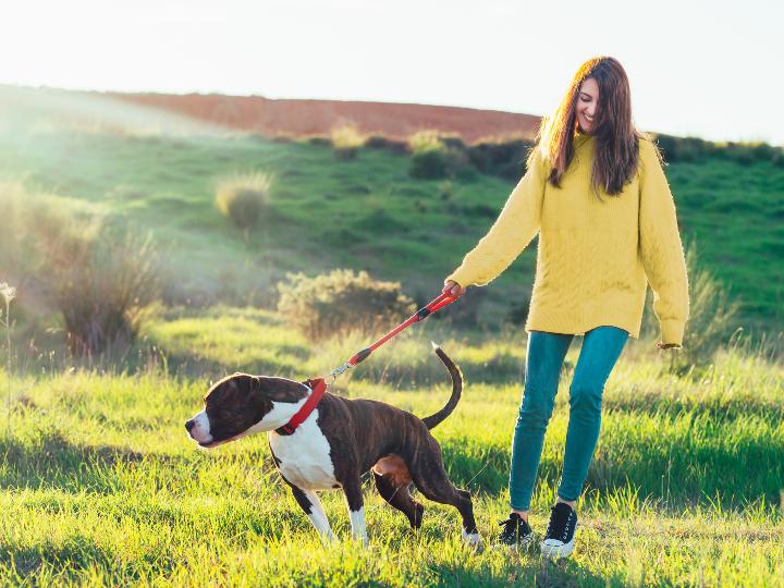 Imagen ilustrativa: mujer paseando a su perro.