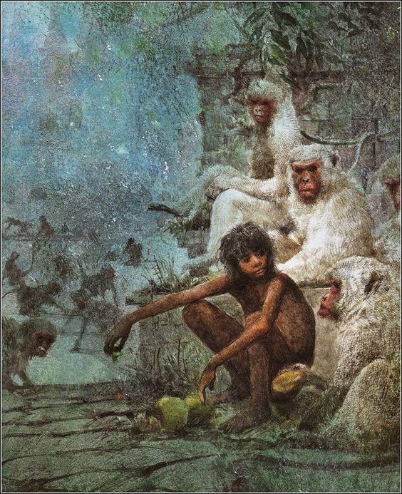el-libro-de-la-selva-real