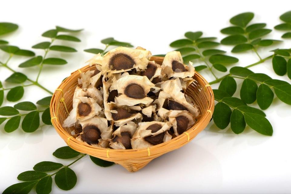 Foto de semillas de moringa en un plato