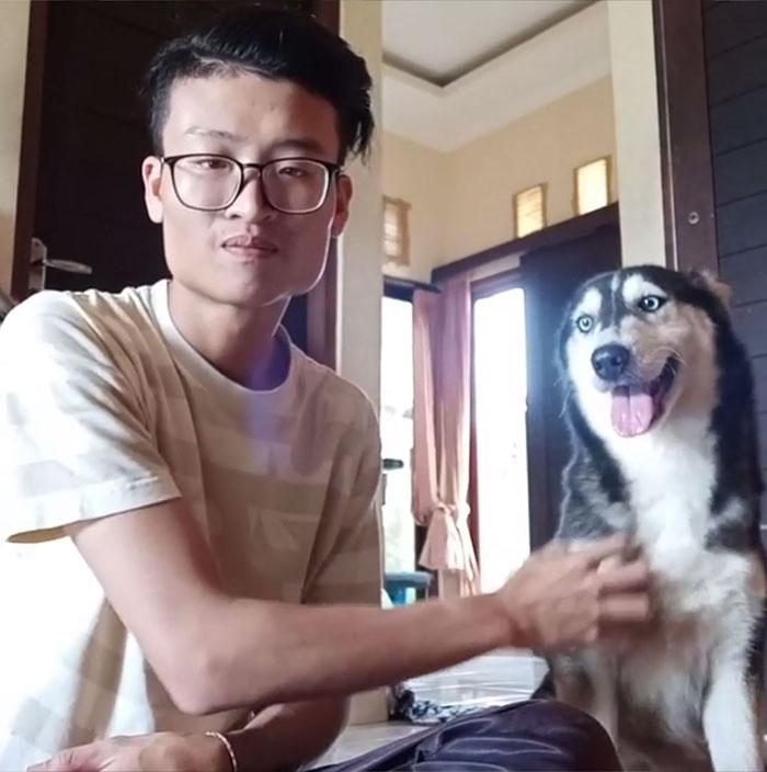 sorpresa-perrito-rescatado-husky-recuperado