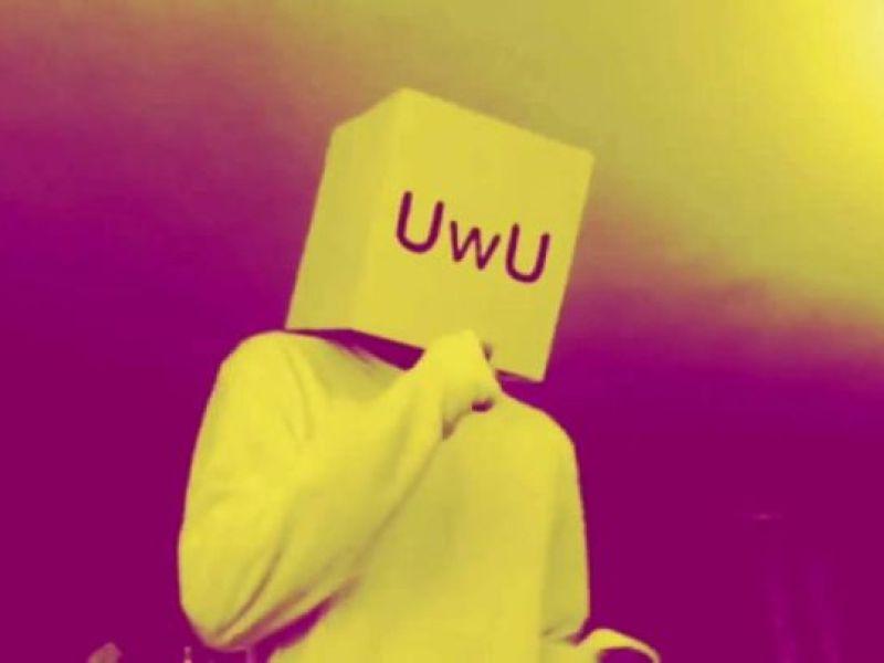 Qué Significa Uwu Te Lo Explicamos Actitudfem