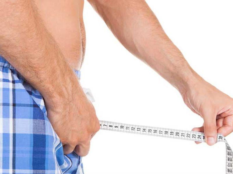 ¿Cuál es el ancho promedio de los penes?