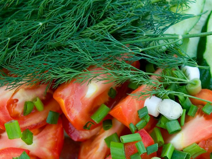 Las semillas de hinojo también son ricas en este componente de acuerdo con el Journal of Ethnopharmacology de Estados Unidos.