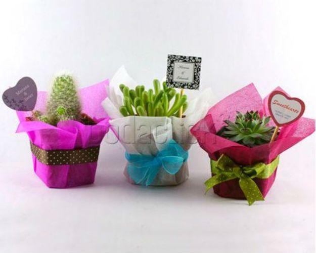 Recuerdos originales para regalar en tu boda soyactitud - Plantas pequenas para regalar boda ...