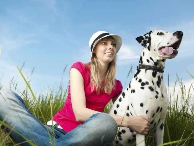mujer abotonada con perro dalmata perro a para el hombre