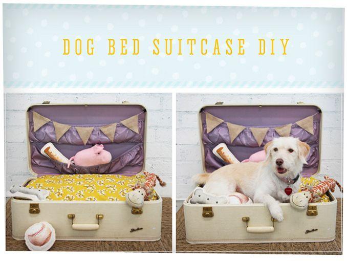 Como construir una cama de perro actitudfem - Como hacer una cama para perro ...