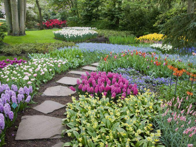 Plantas exteriores resistentes al sol excellent with - Plantas de sol directo para jardin ...