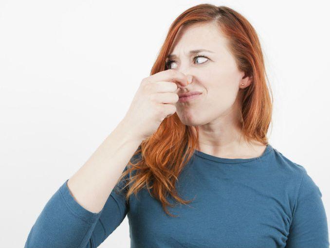 Tips para eliminar los malos olores de tu casa actitudfem - Eliminar olor tabaco casa ...
