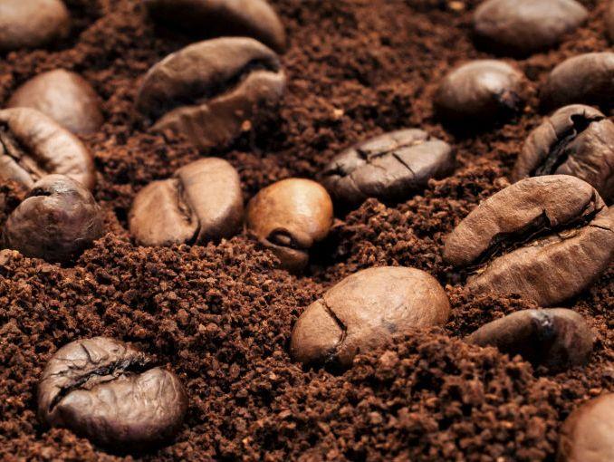 Granos de café sobre café molido