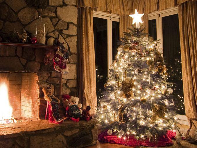 1a4b793db62 4 razones para poner un árbol de Navidad natural