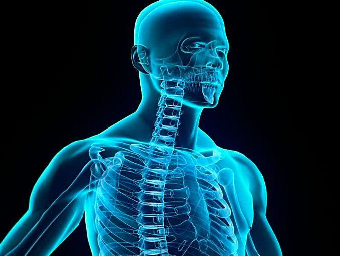 Partes inútiles del cuerpo humano | ActitudFem