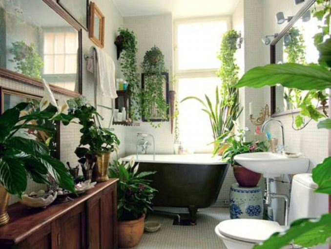 7 ideas para decorar tu bao con plantas segn Pinterest ActitudFem